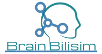 Brain Bilisim